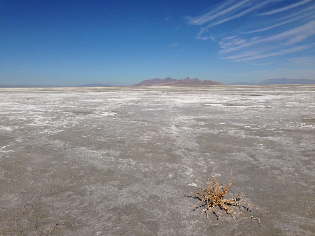 ...und dazwischen: Salzwüste,...